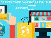 Cat costa un magazin online. Variante de plata